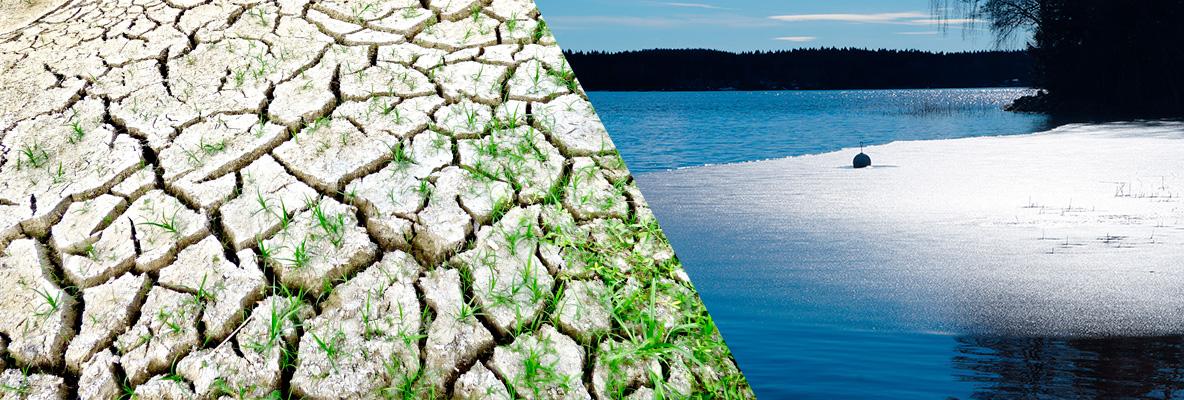 Ecología y cambio climático en la escuela para una cultura ciudadana