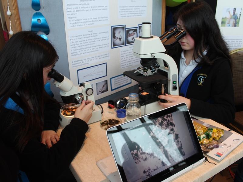 Gran convocatoria marcó 7° versión de la Feria de la Ciencia y la Tecnología en Osorno