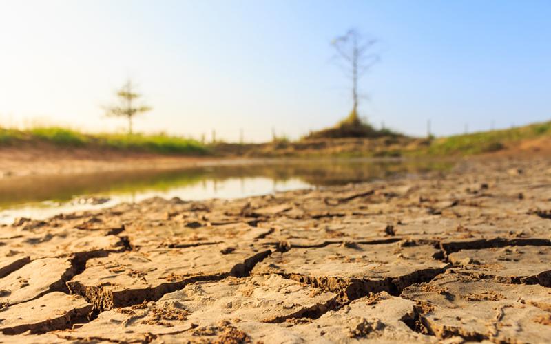 Crisis hidro-climática