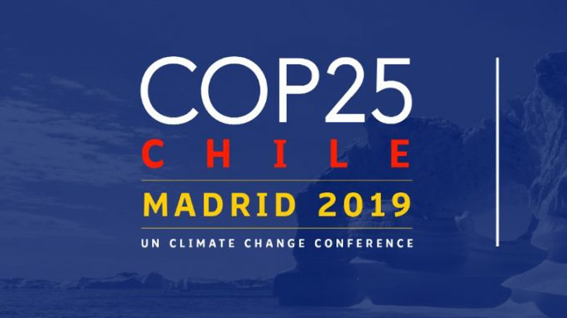 Pros y contras de la COP25