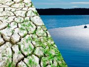curso cambio climatico