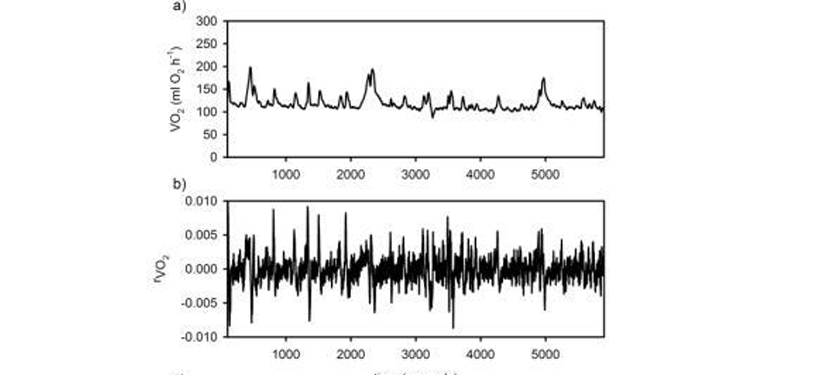 Effects of thermal environment and activity on the fractal properties of metabolic rate in Mus musculus